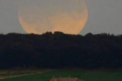 K800_eclipse_lee