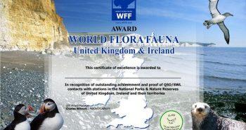 K800_WFF_Award_min1