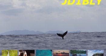 JD1BLY